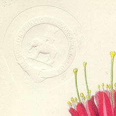 Blind stamp on antique print