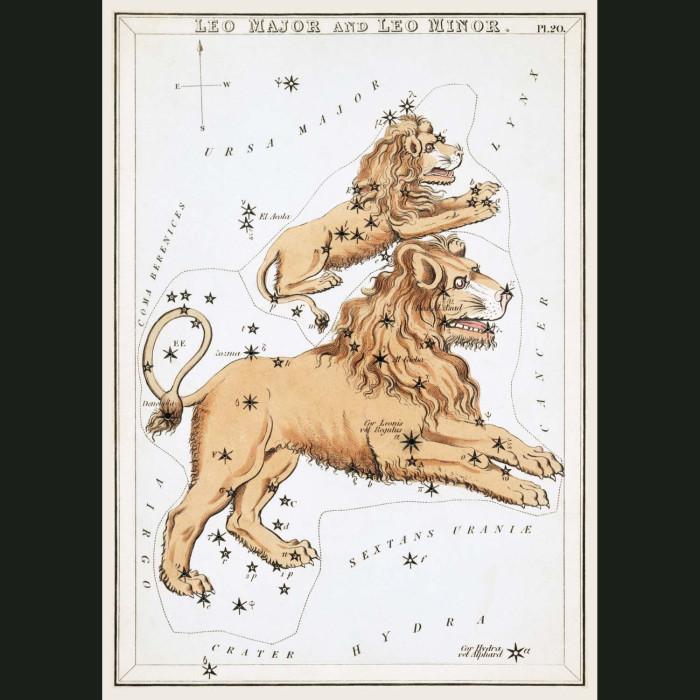 Fine art print for sale. Celestial Map Of Leo Zodiac Star Constellation