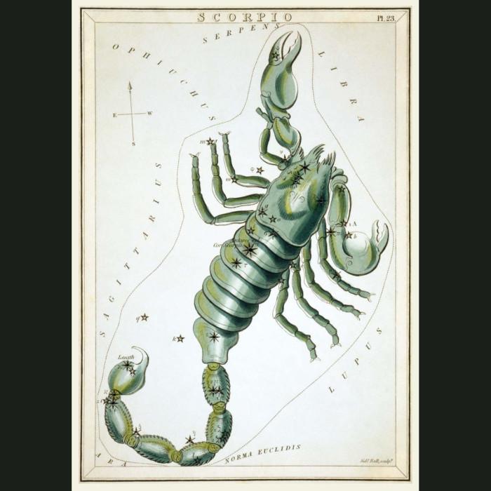 Fine art print for sale. Celestial Map Of Scorpio Zodiac Star Constellation