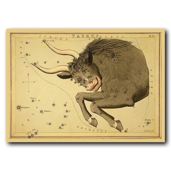 Fine art print for sale. Celestial Map Of Taurus Zodiac Star Constellation