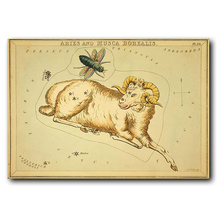 Fine art print for sale. Celestial Map Of Aries Zodiac Star Constellation