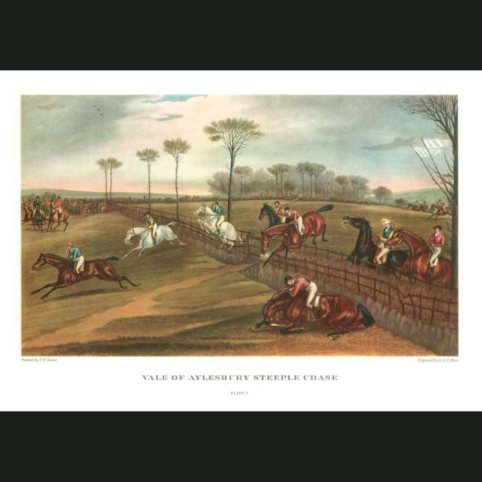 Fine art print for sale. Vale of Aylesbury Steeple Chase. Plate III