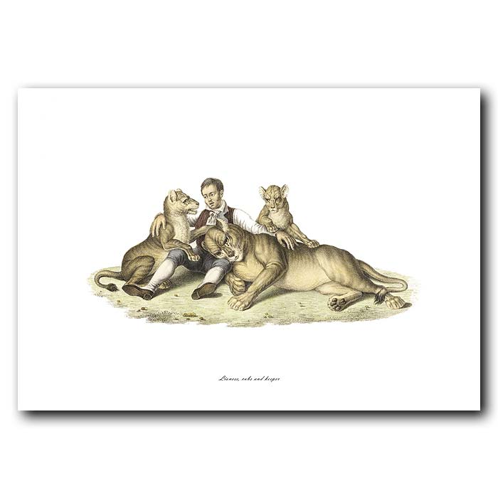 Fine art print for sale. Lioness, Cubs & Keeper