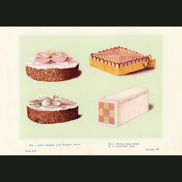 Fine art print for sale. Gateaux With Leaves, Battenburg Cake