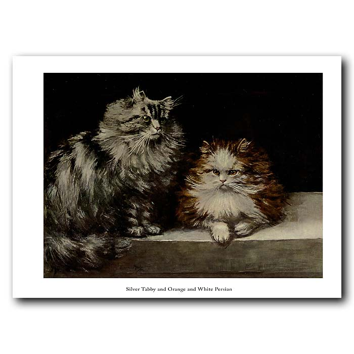 Fine art print for sale. SIlver Tabby and Orange and White Persian Cats