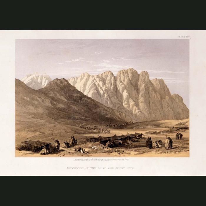 Fine art print for sale. Camp Of The Qulad Said, Mt Sinai