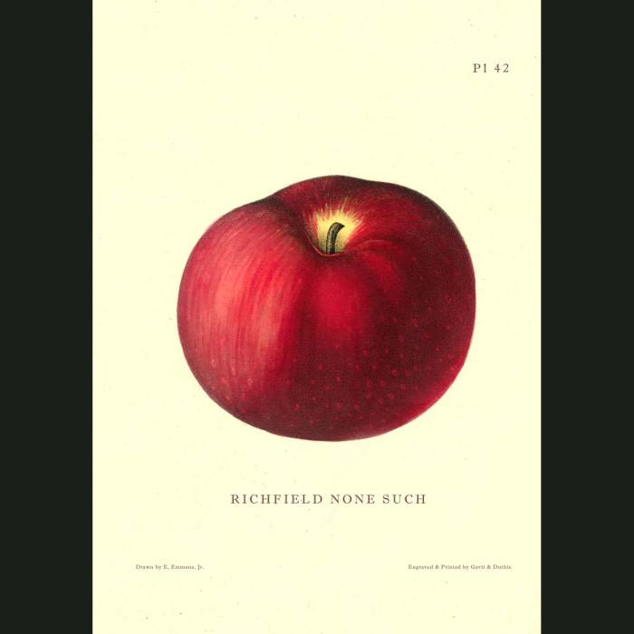 Fine art print for sale. Richfield None Such Apple