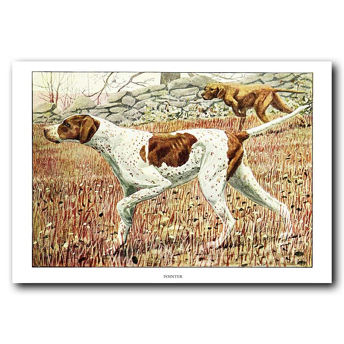 Fine art print for sale. Pointer Dogs