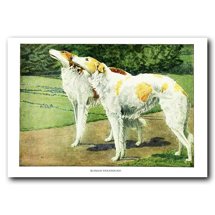 Fine art print for sale. Russian Wolfhounds