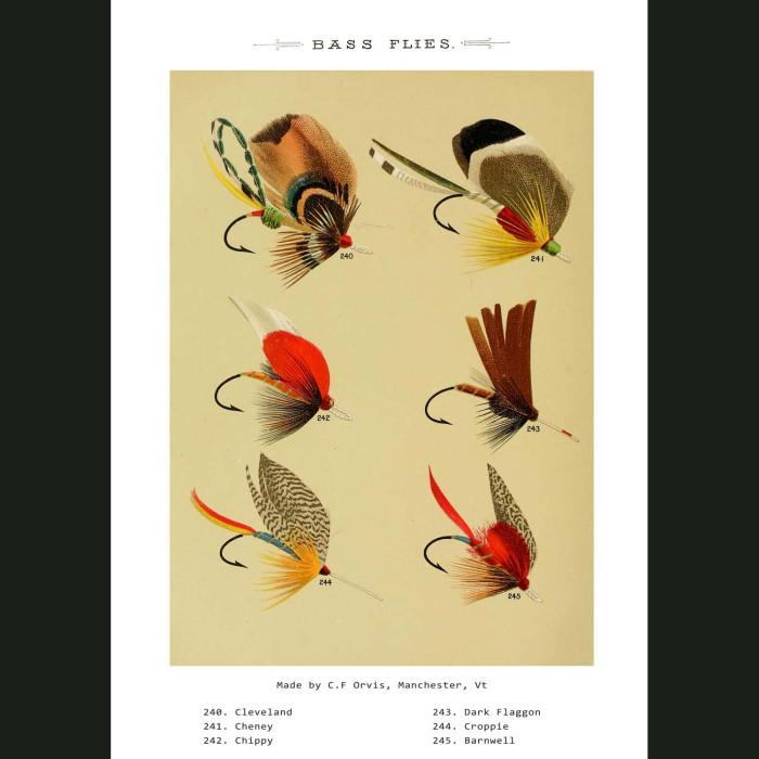 Fine art print for sale. Bass Fishing Flies (II)