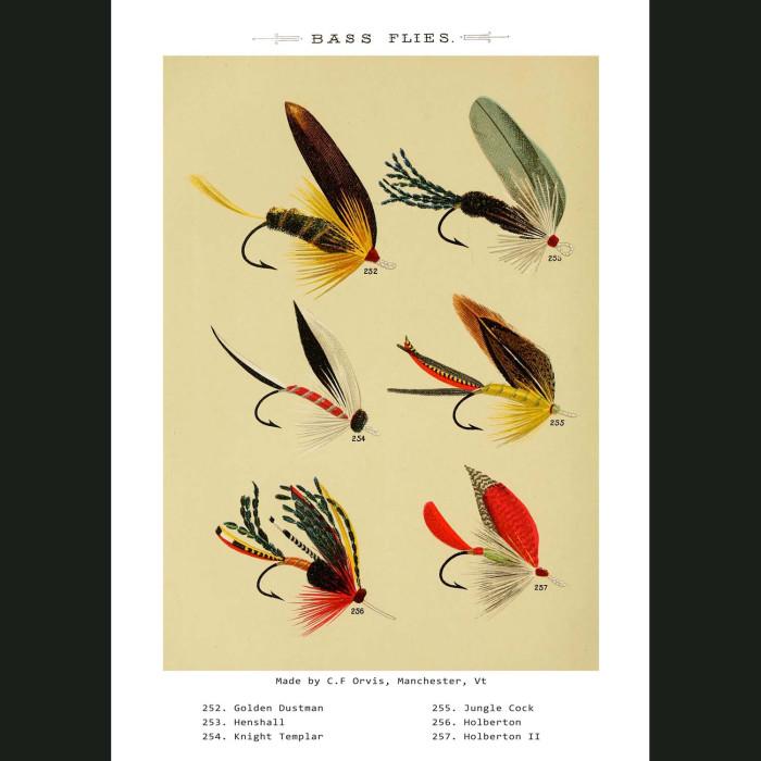 Fine art print for sale. Bass Fishing Flies (IV)