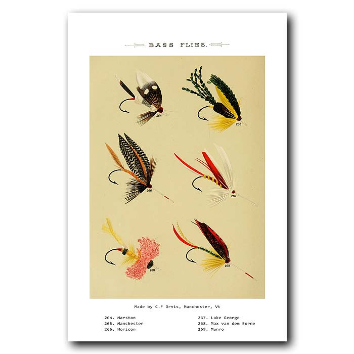 Fine art print for sale. Bass Fishing Flies (VI)