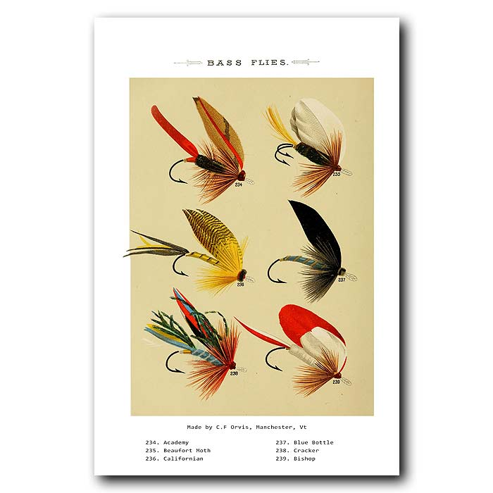 Fine art print for sale. Bass Fishing Flies