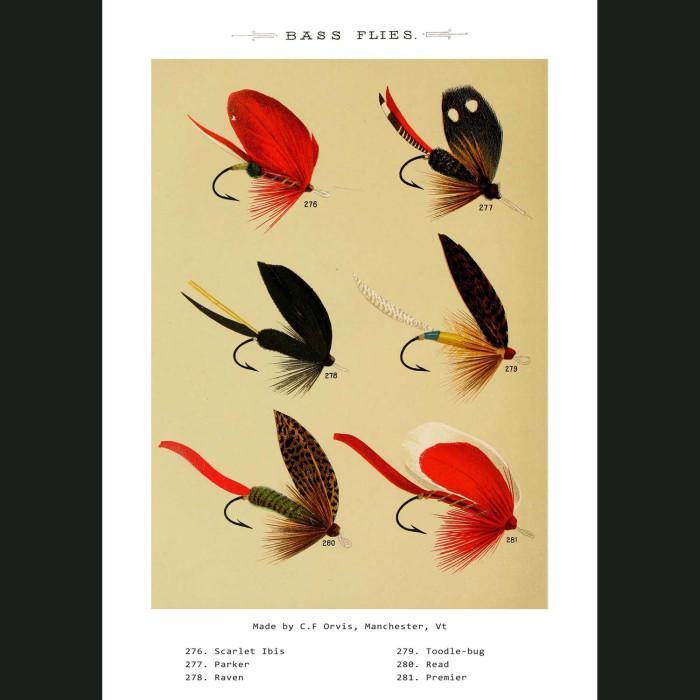 Fine art print for sale. Bass Fishing Flies (VIII)