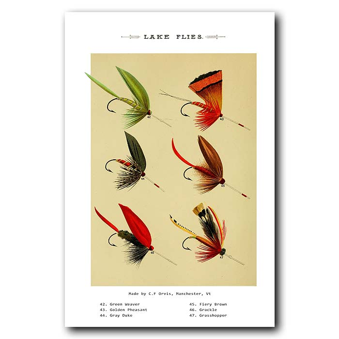 Fine art print for sale. Lake Fishing Flies (II)