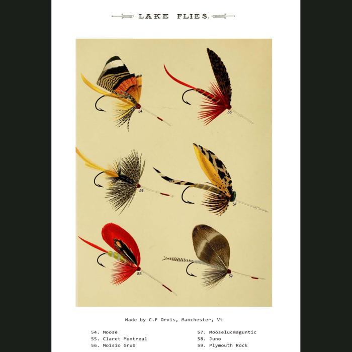 Fine art print for sale. Lake Fishing Flies (IV)