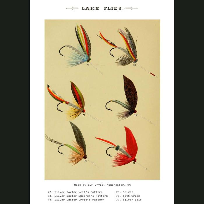 Fine art print for sale. Lake Fishing Flies (VII)