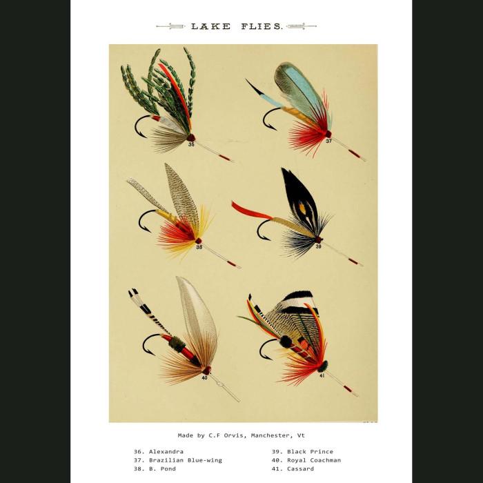 Fine art print for sale. Lake Fishing Flies