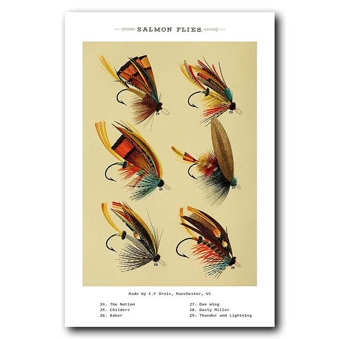 Fine art print for sale. Salmon Fishing Flies (II)