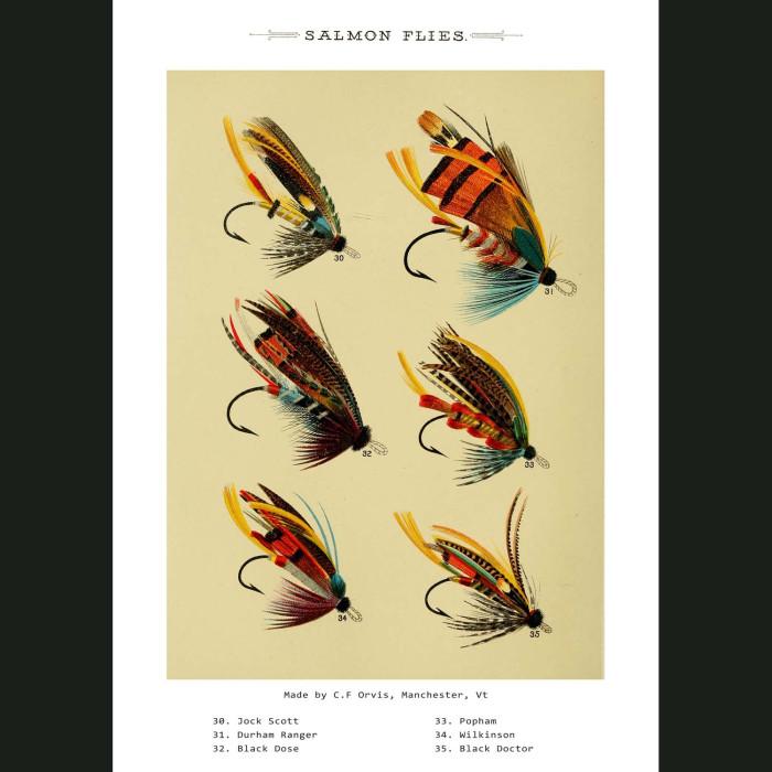 Fine art print for sale. Salmon Fishing Flies (III)