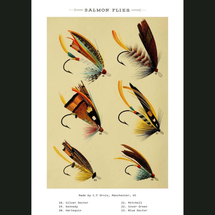 Fine art print for sale. Salmon Fishing Flies