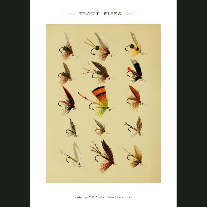 Fine art print for sale. Trout Fishing Flies (III)