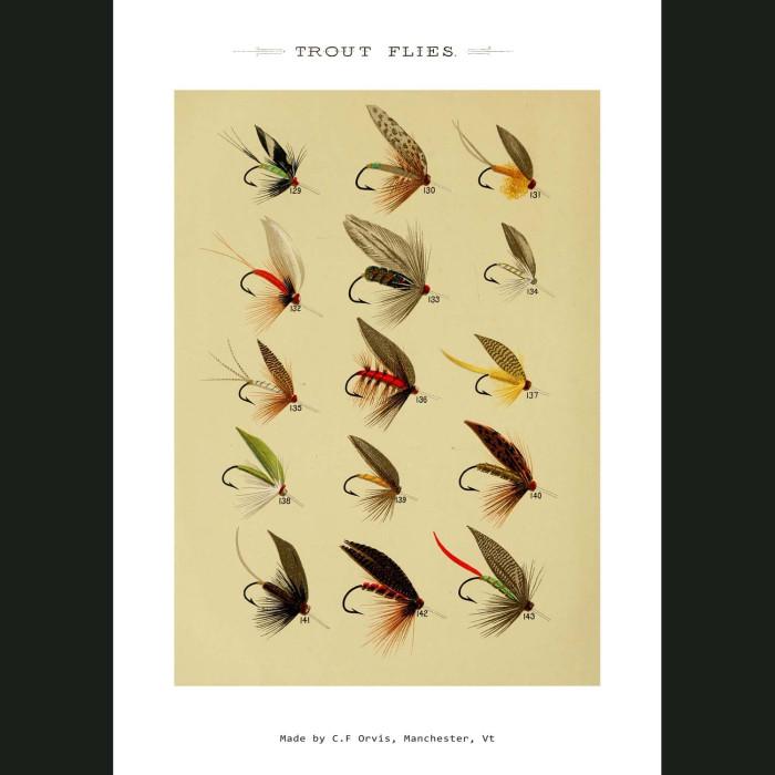 Fine art print for sale. Trout Fishing Flies (IV)