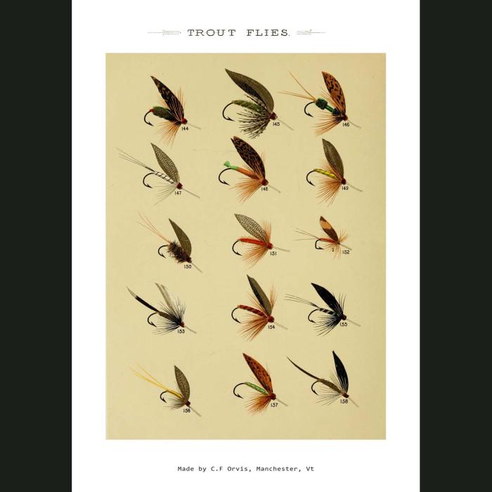 Fine art print for sale. Trout Fishing Flies (V)