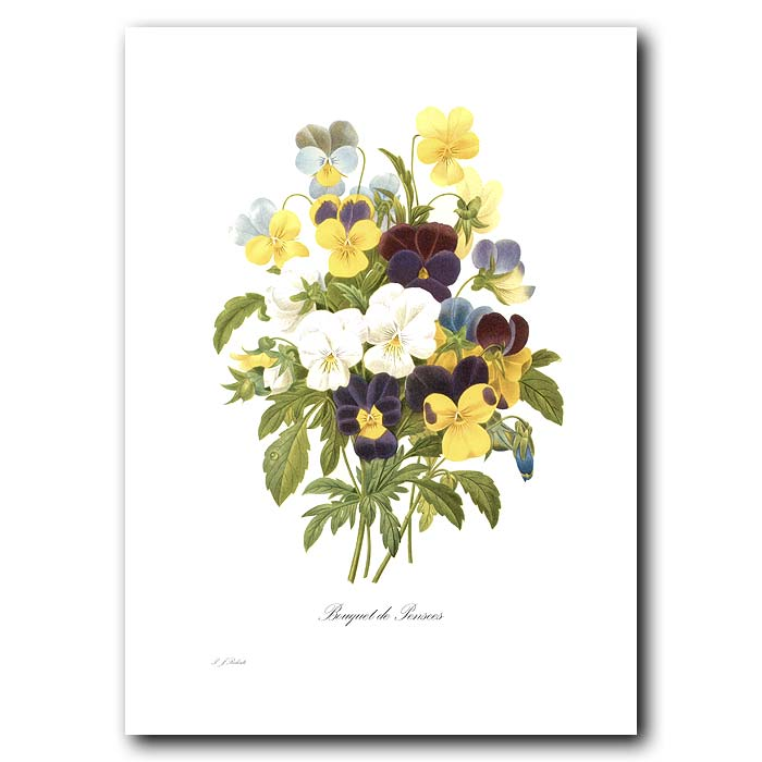 Fine art print for sale. Bouquet Of Pansies