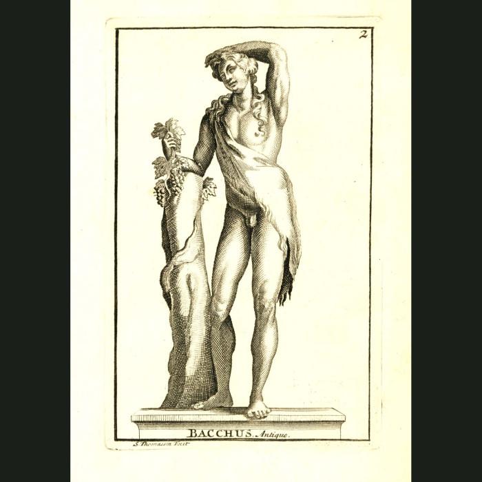 Fine art print for sale. Bacchus or Dionysus