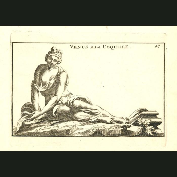 Fine art print for sale. Venus a la Coquille