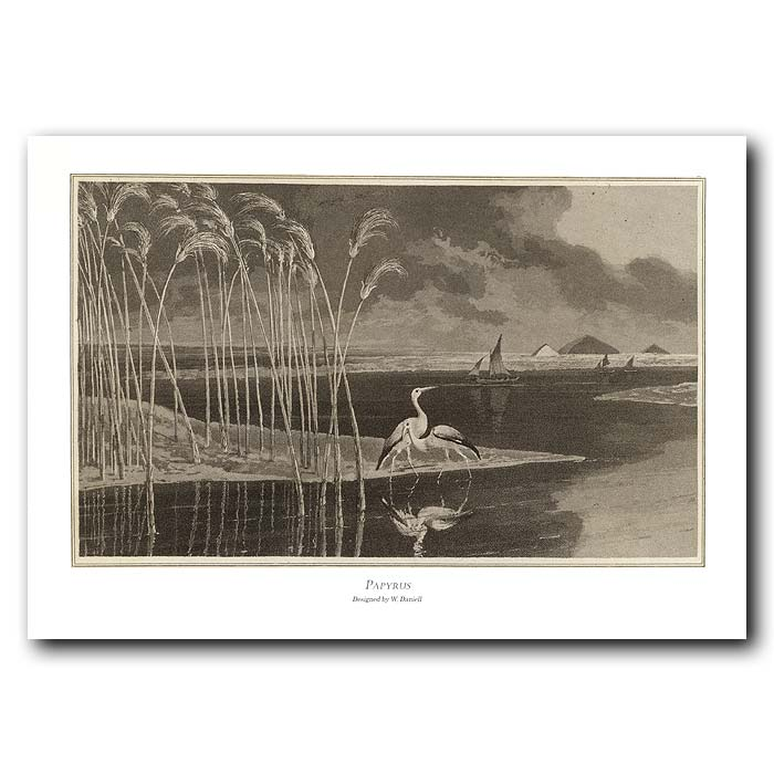 Fine art print for sale. Heron And Papyrus In Egypt